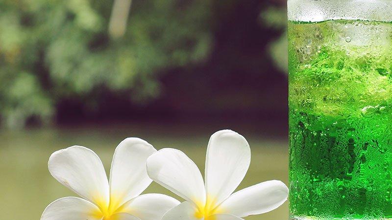 3 bebidas que aceleran la pérdida de peso